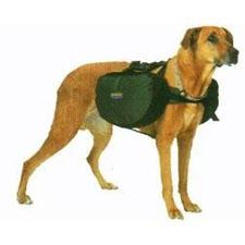 backpackdog