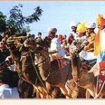 Pushkar Fair 2011 Dates & Activities