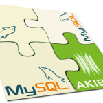 Breakthrough in Mysql Query Optimization made Possible with Akiban Technologies
