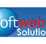 Softweb Solutions Awarded by CSI as a Young IT Professional 2013