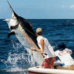 Quepos Marlin Fishing of Quepos, Costa Rica Launches A New Website