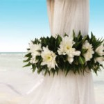 Let Your Wedding Bells Ring At Koh Samui