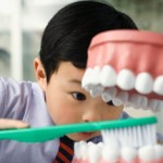 Studies Show Kids are More Prone to Oral Diseases and Tooth Decay