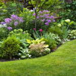 Discover Unequaled Lawn Care Services Offered in Virginia